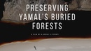 Preserving Yamal s buried forests