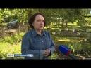Льготники Вологодской области стали получать повышенные выплаты