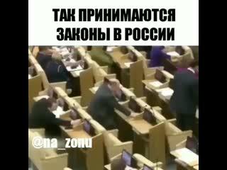 Как принимают законы в России