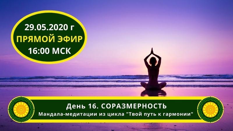 День 16. Соразмеренность. Мандала-медитации из цикла Твой путь к гармонии