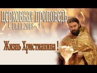 11 11 2018 дьявол воюет против нас с пеленок! Протоиерей Андрей Ткачёв