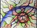 Нейрографика. Марафон трансформации одной важной темы. Вуть 1