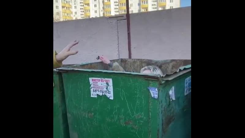 королева мусорки тиффани бугатти