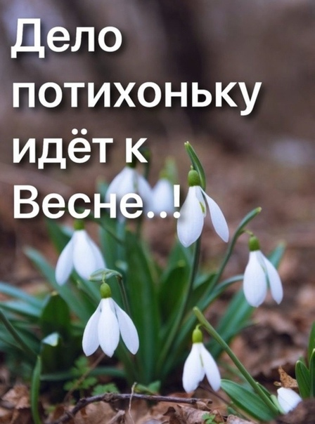 Дело потихоньку идет к Весне