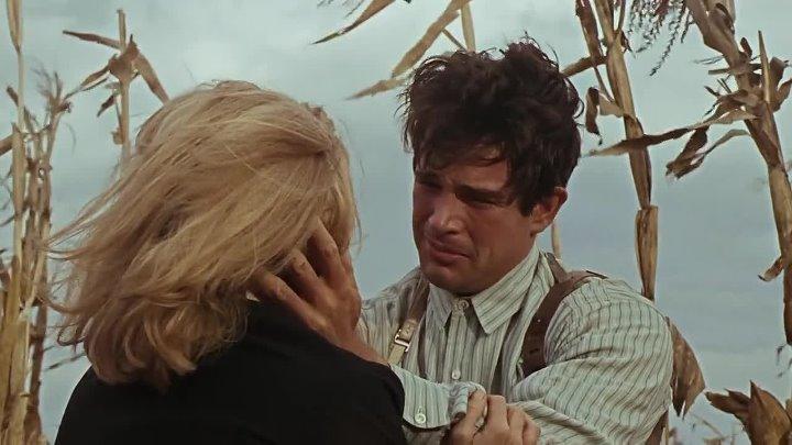 фильм = Бонни и Клайд - (1967г) HD
