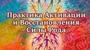 Мощная Практика Активации и Восстановления Силы Рода