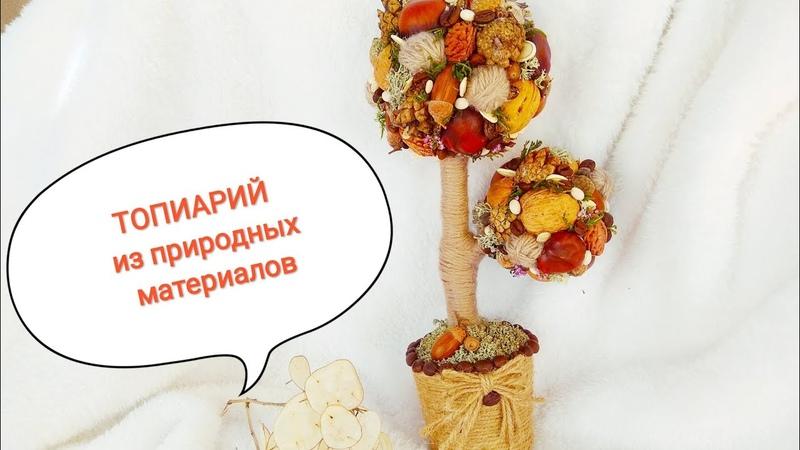 Топиарий из природного материала Осенний топиарий МК Topiary tree of happiness