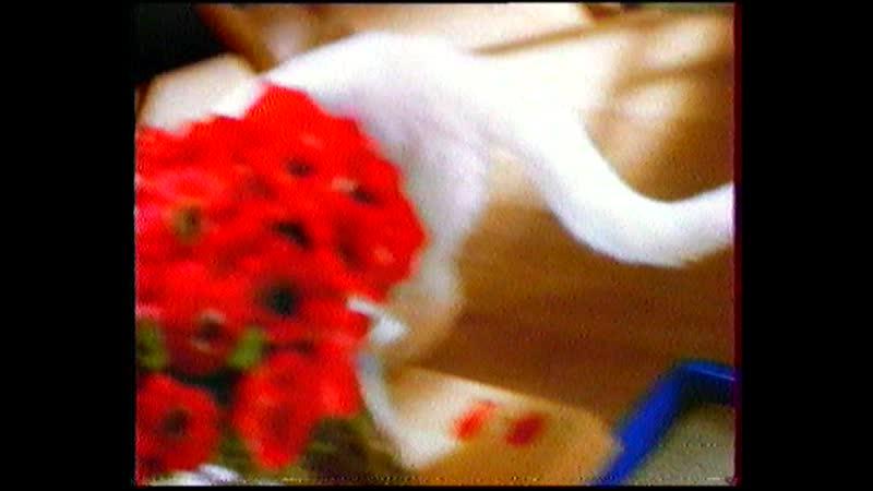 Рекламный блок (ТНТ, 2002)