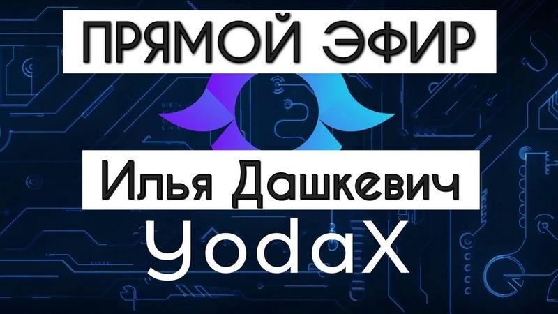 Интервью с основателем криптовалюты YodaX. Илья Дашкевич о монете YOD. Как взорвать крипторынок