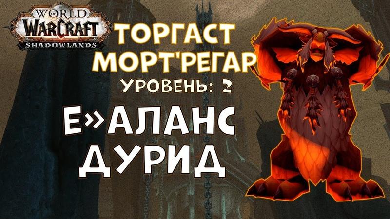 Торгаст | Мортрегар | Уровень 2 | Баланс Друид - World of Warcraft Shadowlands