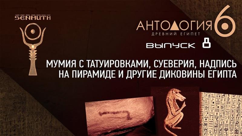 Мумия с татуировками и другие диковины Египта • Антология 6 • Выпуск 8 ▲ [by Senmuth]