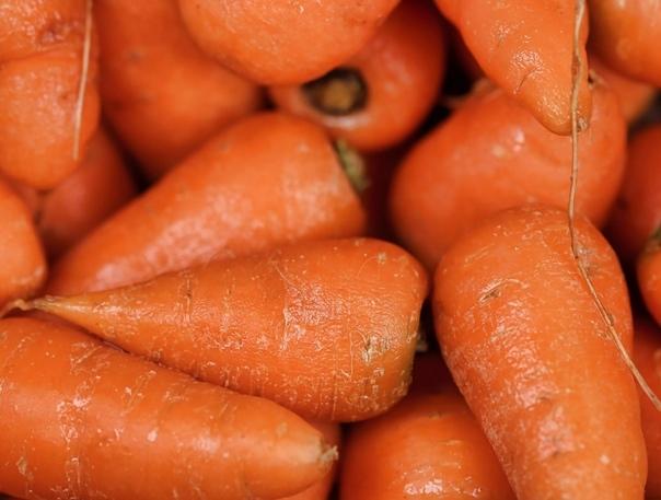 Морковка Заранее прошу простить за сентиментальность и эмоции, просто накатило. Мы шли по поросшей сорняками тропинке к гаражам, чтобы закрыть погреб на зиму. На дворе 2004, мне 5 лет, иду и