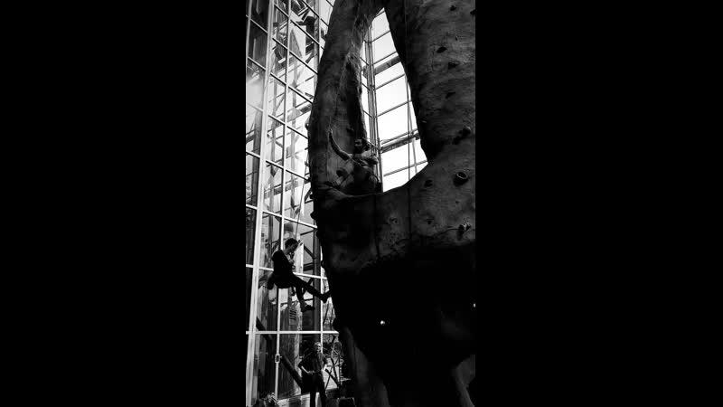 Jason Momoa | VÍDEO.