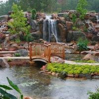 Сад Мечты! Ландшафтный дизайн. Краснодар