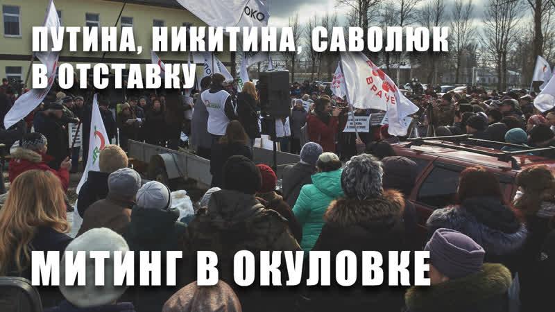 Путина, Никитина, Саволюк в отставку. Митинг в Окуловке