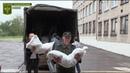 Народная милиция ЛНР доставила гумпомощь в прифронтовой н п Золотое 5