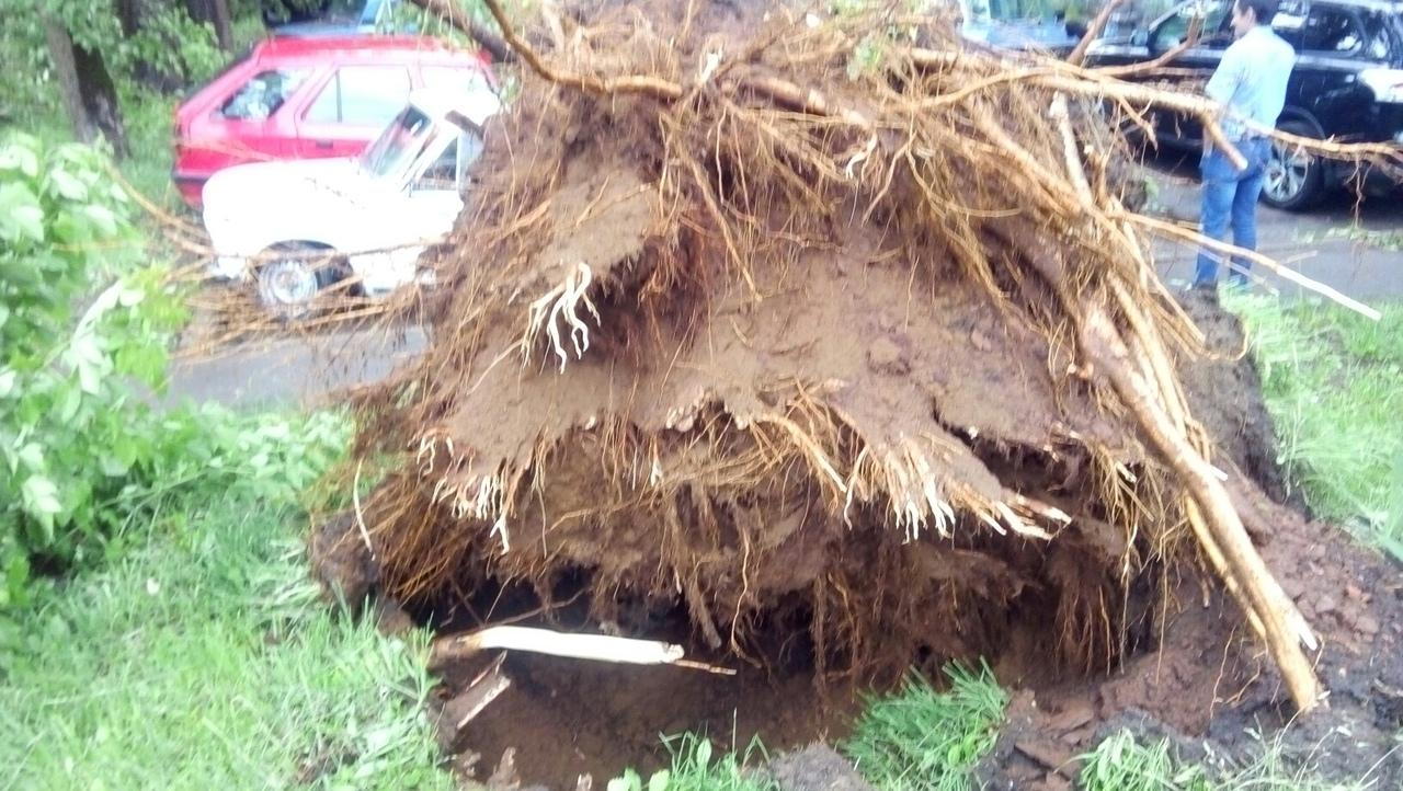 ураган в кирове июнь 2019