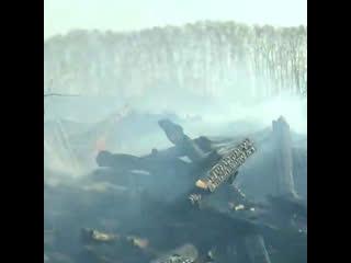 В Сибири начались масштабные лесные пожары