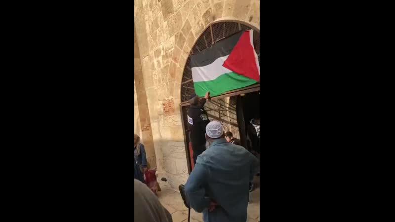 🇮🇱 срывает флаг 🇵🇸 с 🕌 Аль-Акса