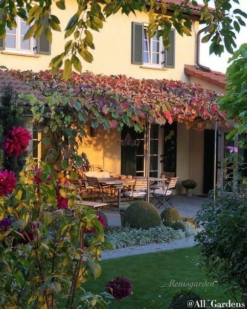 КАЛЕНДАРЬ РАБОТ САДОВОДА В НОЯБРЕ: в саду, огороде, ягоднике, цветнике и комнате.