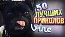 Самые Лучшие Приколы Vine! (ВЫПУСК 81) [17 ]