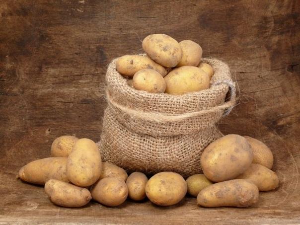 Хранение овощей в квартире  правила и тонкости.