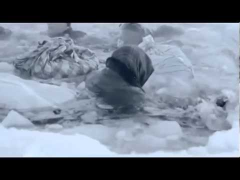 Сериал Ладога 2014 трейлер