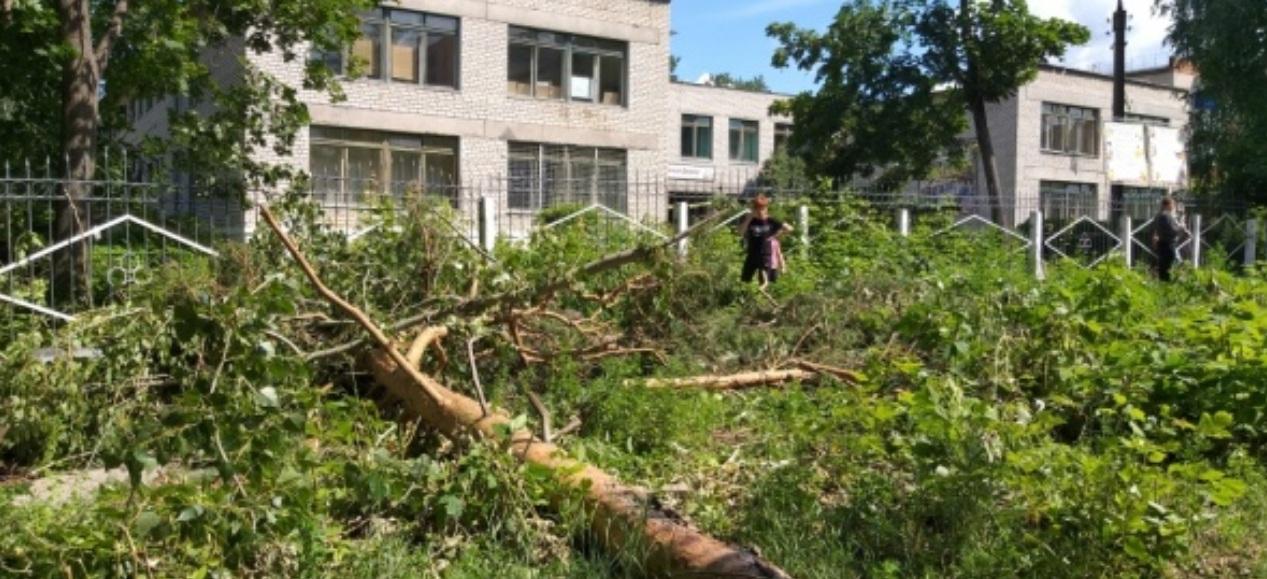 Руководитель администрации Волжска рассказал о ликвидации последствий урагана в городе