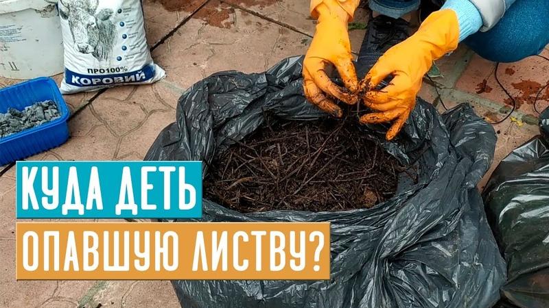 КОМПОСТ В МЕШКАХ 💥 Готовим качественный компост без хрущей / Садовый гид