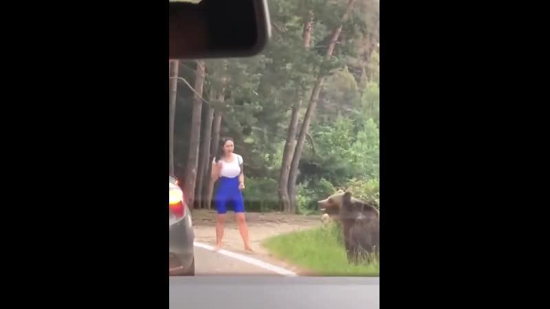 Румыния Девушка решила познакомится с диким медведем поближе
