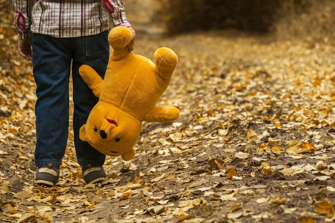 В Марий Эл ищут пятилетнего ребенка из Красноярского края