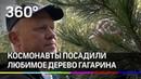 Космонавты посадили любимое дерево Гагарина в Звёздном городке