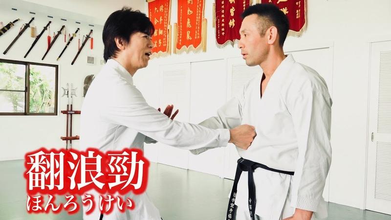 宮平保に「音はするのに見えない突き」を習ってみた【中国武術の翻浪勁】 Tamotsu Miyahira's Kung-fu,Invisible punch technique!