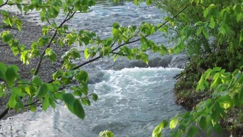 Где живут русалки Айские берега и волшебный лес