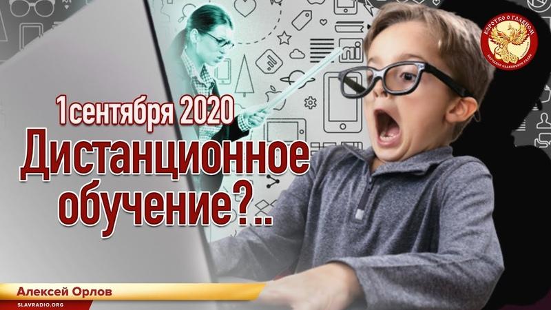 1 сентября 2020. Дистанционное обучение?.. Алексей Орлов - YouTube