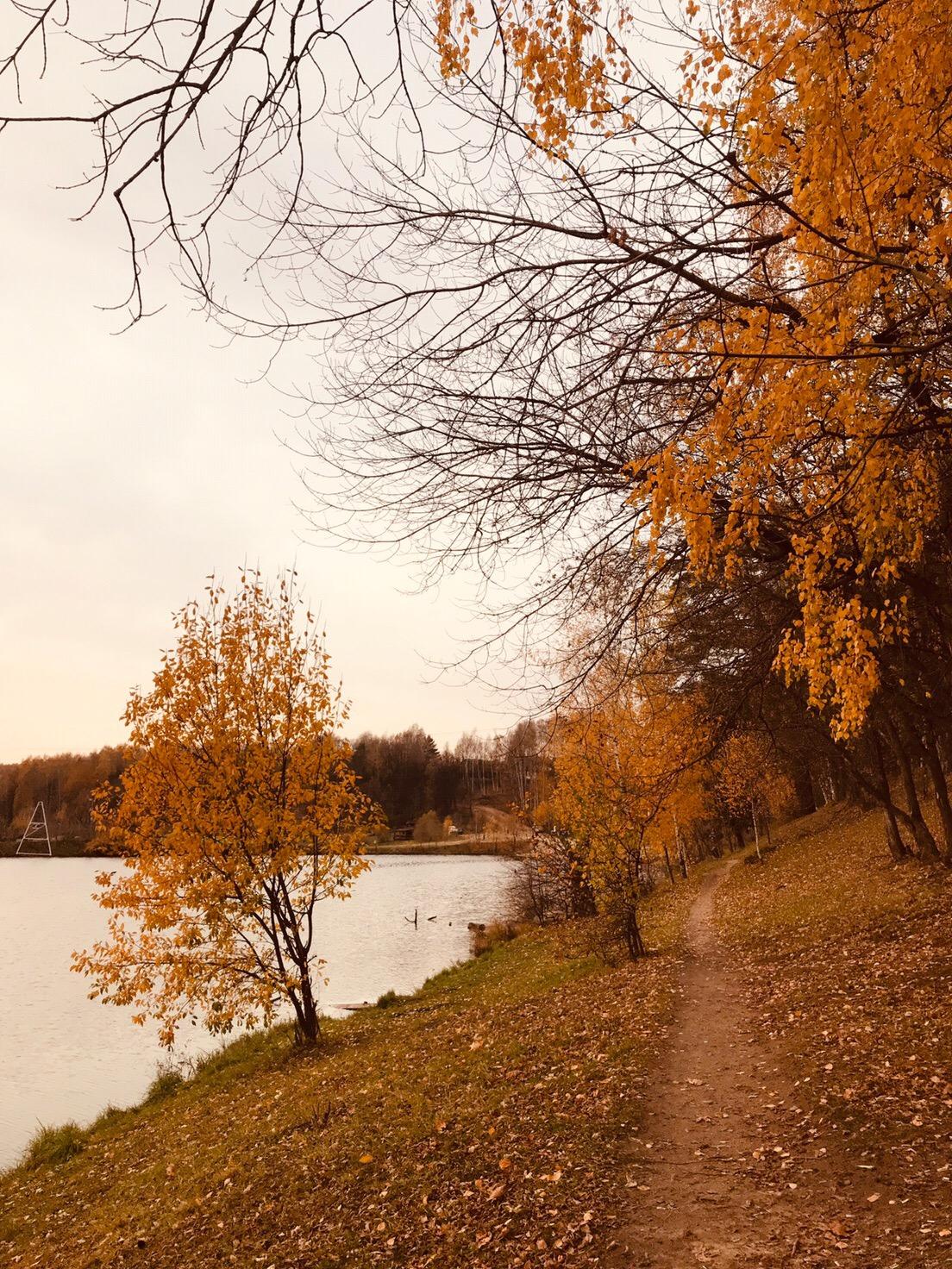 Старая плотина  #Красногорск_город