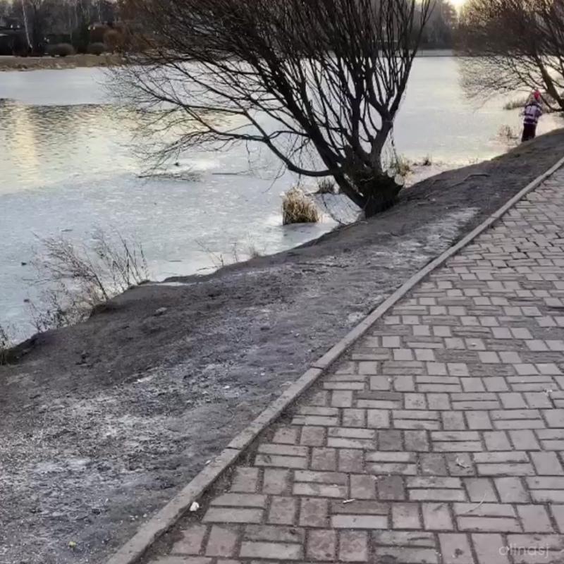 Женщина спасла собаку из ледяной воды