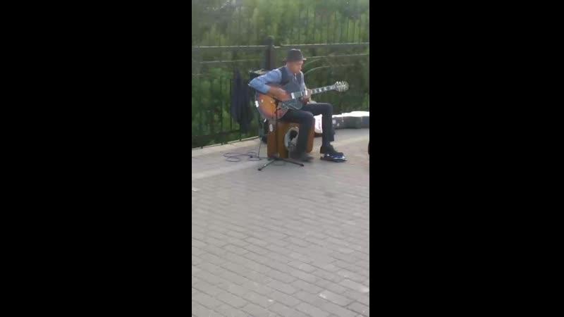 Александровский сад Уличный музыкант