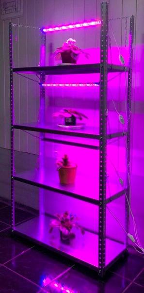 Подсветка для растений и рассады в интернет-магазине Lightwer :