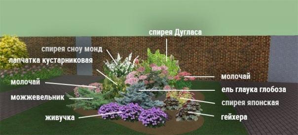 Главные правила создания цветника: