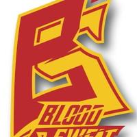 Логотип Blood&Sweat - все об ММА и боях без правил