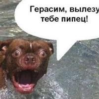 Фото Куку Ны ВКонтакте