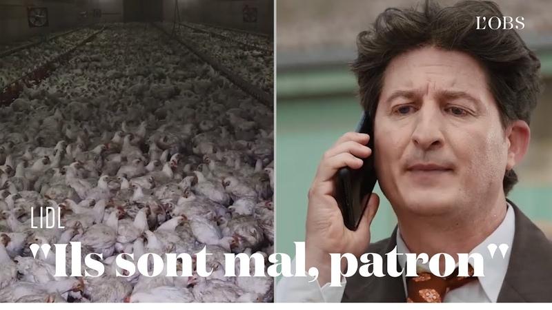 L214 parodie Lidl pour dénoncer les pratiques d'élevage et d'abattage des poulets