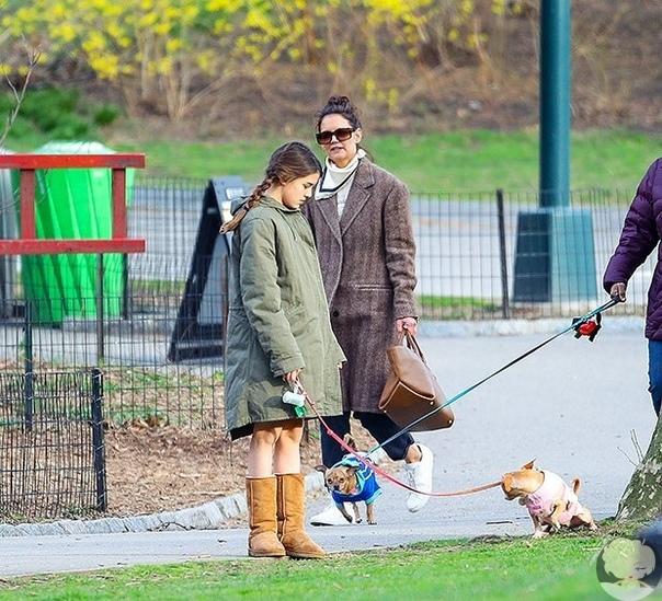 Сури Круз и Кэти Холмс на прогулке с собаками в Нью-Йорке в период глобальной паники