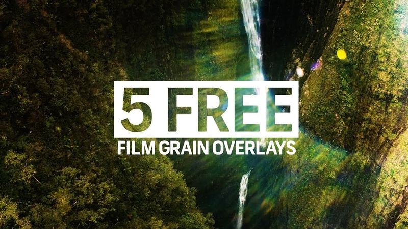 FREE Film Grain Overlays   Free Assets and Elements