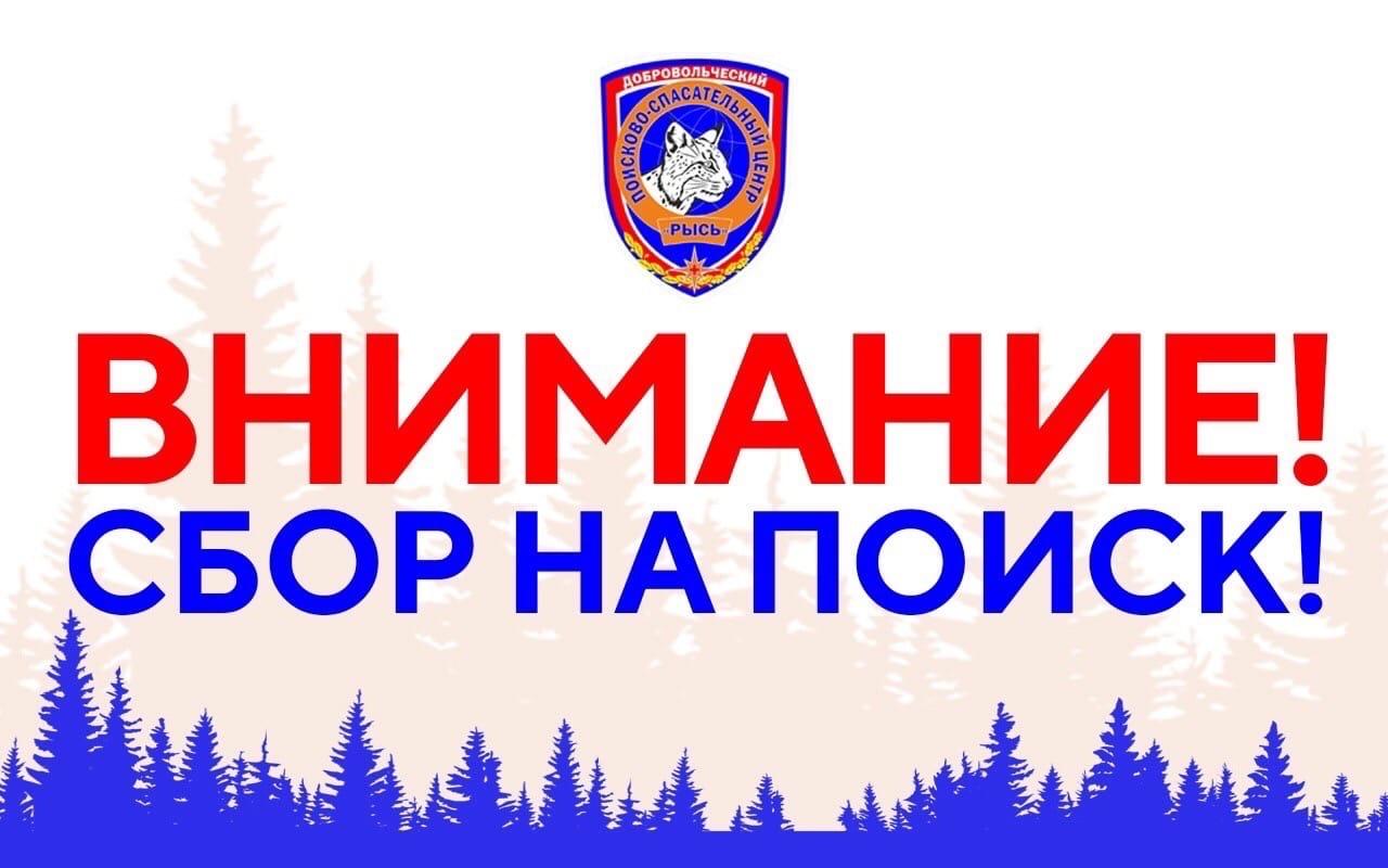Сбор на поиск! Сокольский р-он, д. Березово
