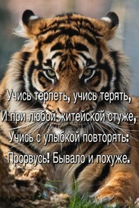 Шихалеев Сергей