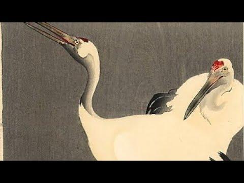 Хокку Журавли 2. По мотивам гравюр Охара Косона. Японская поэзия.
