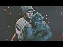 ВЕЧЕРА НА ХУТОРЕ БЛИЗ ДИКАНЬКИ 1961 русский трейлер фильма на канале GoldDisk онлайн